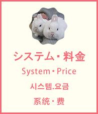 システム・料金