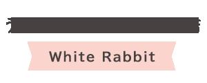 うさぎカフェ・うさぎ専門店 White Rabbit